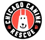 Chicago Canine Rescue Flooring