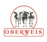 Oberweis Flooring