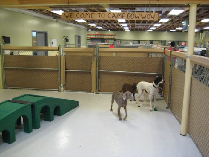 Animal Care Facility Flooring
